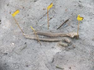 Szczątki poleglego zolnierza spoczywajace na ziemi niczyjej fot Anna Zalewska
